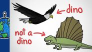 Dinosaur - Definition