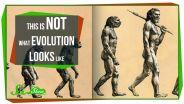 Evolution - Misconceptions