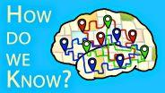 Brain - Functions