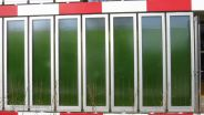 Bio Energy - Algae Energy Processes