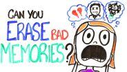 Memory - Memory Erasure