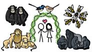Animals - Monogamous Pairing