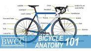 Bicycle - Anatomy
