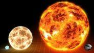 Star - Sizes