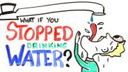 Water - The Importance of Water