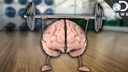 Physical Exercise - Effects on Memory