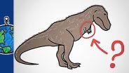 Tyrannosaurus Rex - Arms