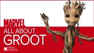Marvel Cinematic Universe - Groot