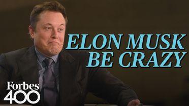 Elon Musk - Career