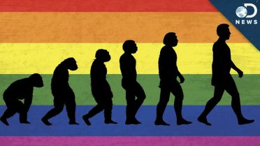 Homosexuality - Evolutionary Perspectives
