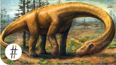 Dinosaur - Facts