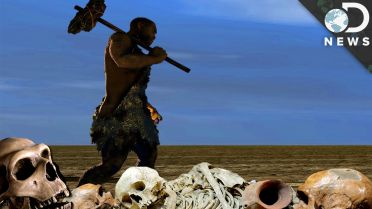 Neanderthal - Possible Causes of Extinction