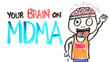 MDMA - Effects on Brain