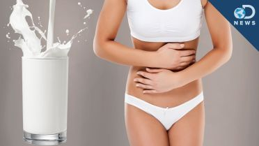 Milk - Nutrition and Health