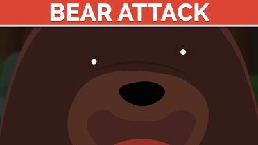Bear Attacks - Human Safety