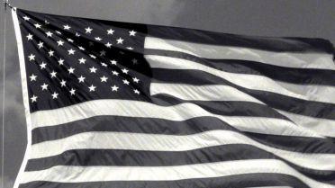 Flag (Jasper Johns)