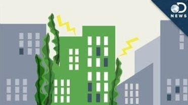 Bio Energy - Algae Energy