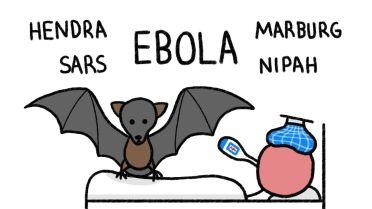 Bats as Carriers of Disease
