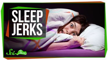 Sleep - Hypnic Jerk