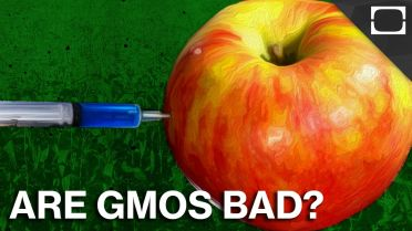 Genetic Engineering - GMO Advantages
