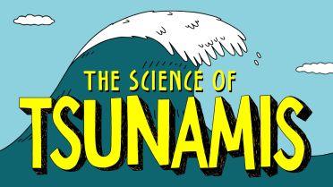 Tsunami - History