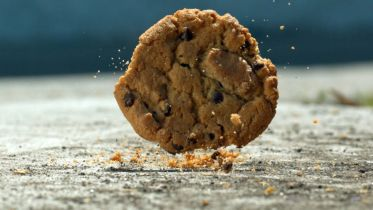 Five-Second Rule - Scientific Research