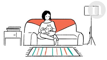 Cat - Domestication