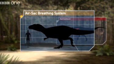 Carcharodontosaurus - Respiratory System