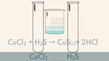 Chemistry - Reactions in Aqueous Solutions