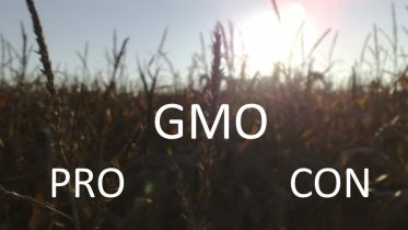 Genetic Engineering - GMO Pros and Cons