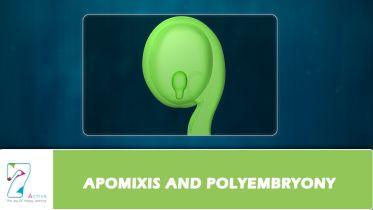 Plants - Apomixis