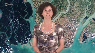 Bangladesh - Sundarbans Web
