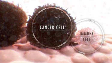 Immunotherapy - Cancer Treatment