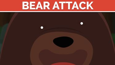 Bear Attacks - Human Safety