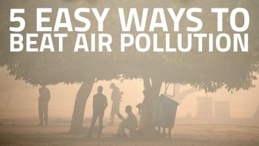 Air Pollution - Protection