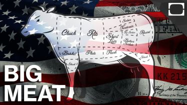 US Meat Industry - Politics and Economy