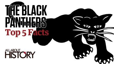 Black Panther Party - Facts