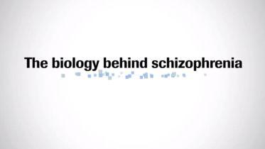 Schizophrenia - Biological Basis