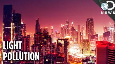 Pollution - Light Pollution Effect