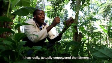 Fair Trade - Impact on Farmers and Workers