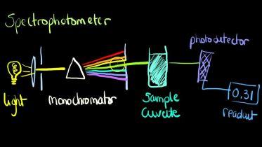 Chemistry - Spectrophotometer