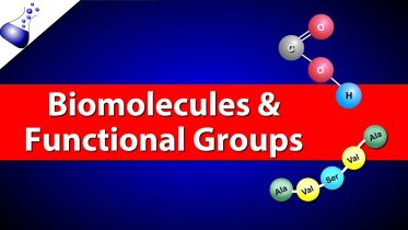 Biomolecules - Functional Groups