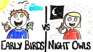 Sleep - Early Birds Vs Night Owls