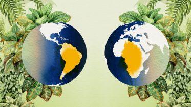 Biogeography - Evolutionary Biogeography
