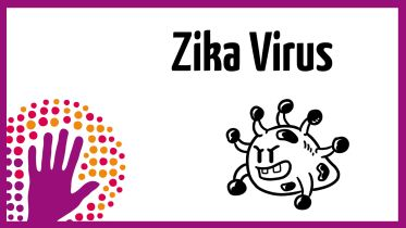 Zika Virus - Facts