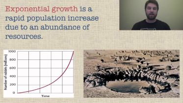Population Growth - Exponential Model