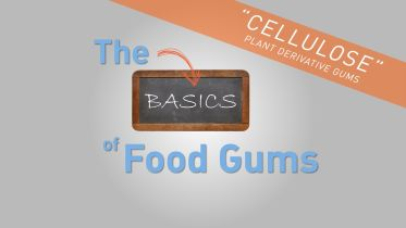 Food Additive - Cellulose and Pectin