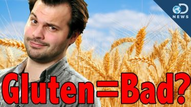 Gluten - Gluten-Free Diet