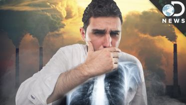 Air Pollution - Health Effects