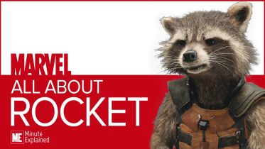 Marvel Cinematic Universe  - Rocket Raccoon